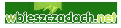 wbieszczadach.net